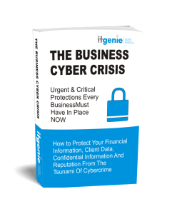 Business Cyber Crisis